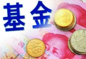 天弘短债债券基金有风险吗